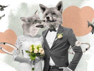 Titelbild Hochzeit