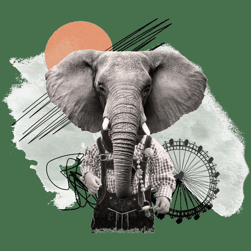 Collage - Elefantenkind